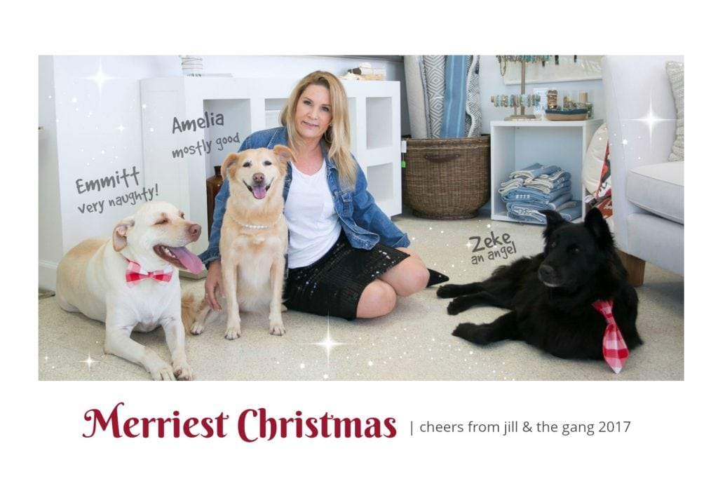 jill shevlin design with dogs christmas card 2017