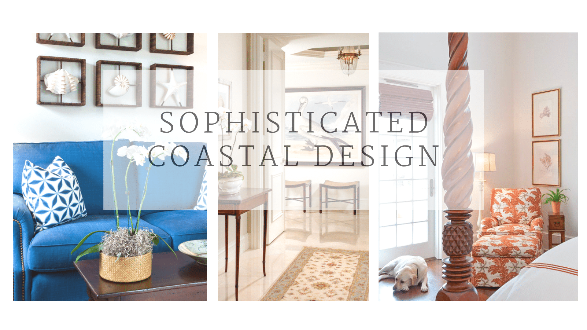 sophisticated coastal design jill shevlin design vero beach interior designer