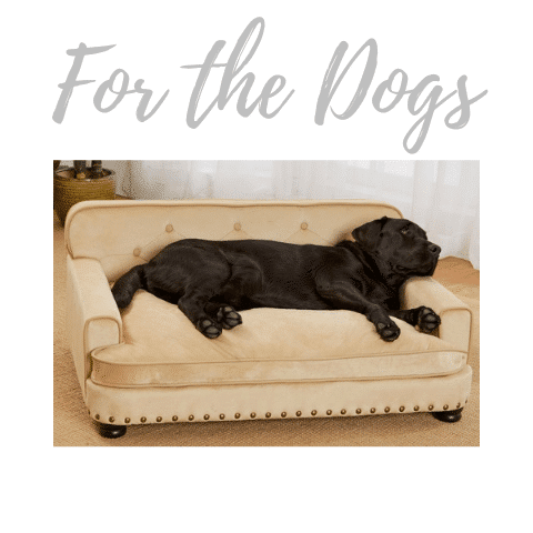 For the Dogs Jill Shevlin Design Vero Beach Interior Designer