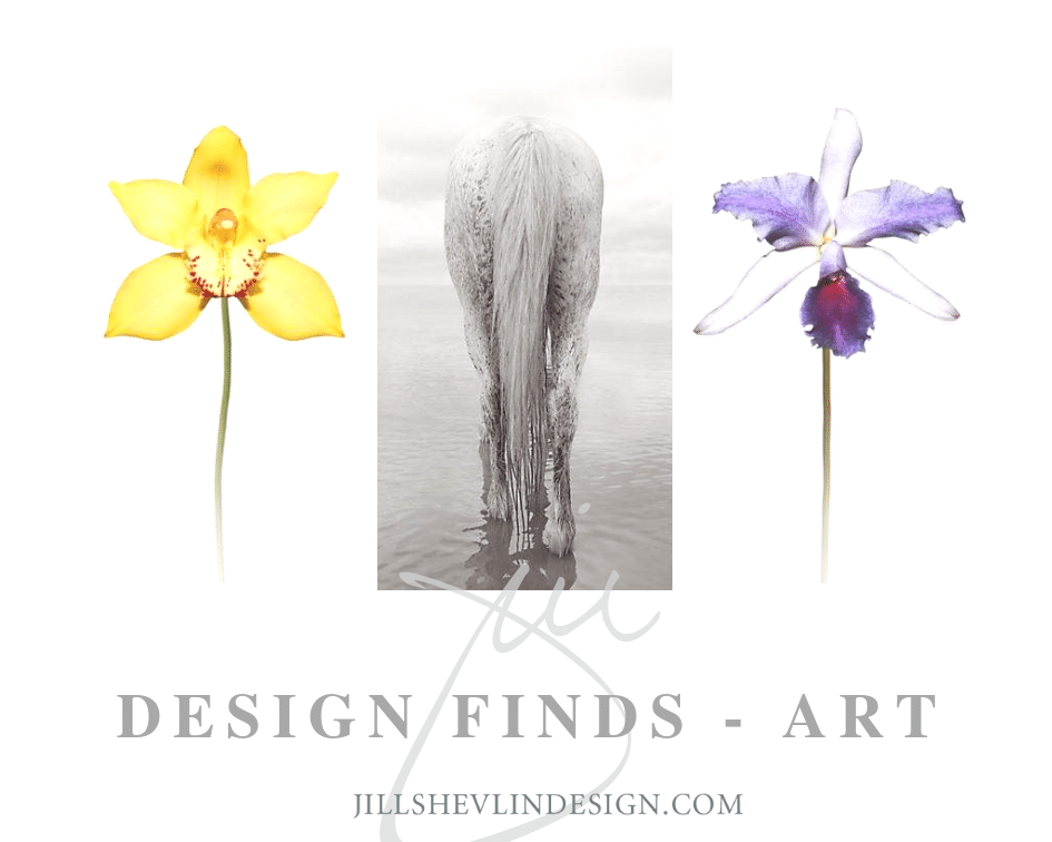 Design Finds Art Shop Coastal Home Decor Jill Shevlin Design Vero Beach Interior Designer