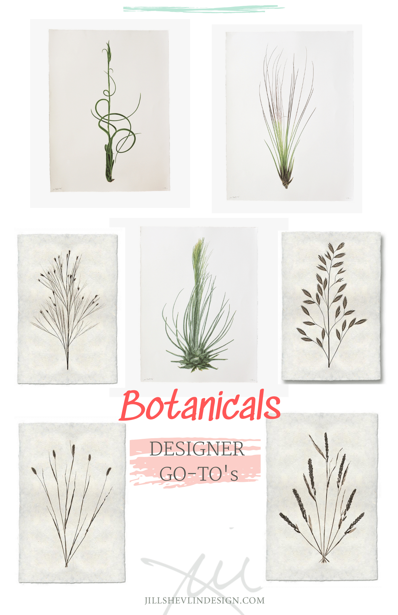 Favorite Finds Botanicals Jill Shevln Design Vero Beach Interior Designer
